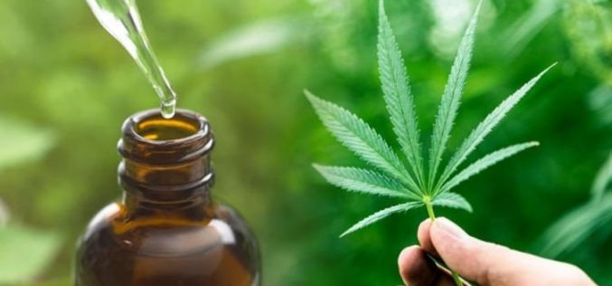 CBD Oil – Uses, Side Effects and Dosage