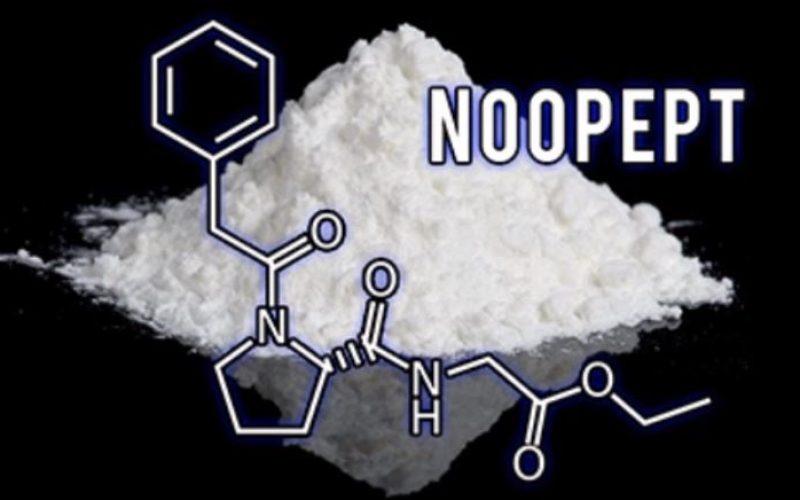 Nootropics is for your Brain Development