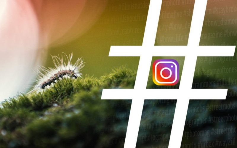 How to Get Instagram Followers Without Hashtag Rush