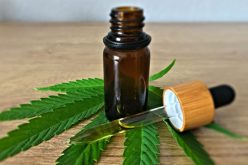 What is the variety of products you will get for having CBD? Check out some of them