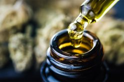 Cannabidiol – The CBG Flower that offers many benefits
