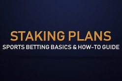 Knowing more about fixed staking plans
